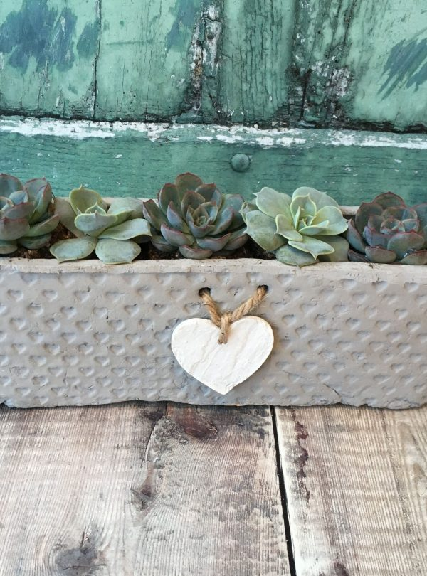 SUCCULENTS IN HANGING HEART POT